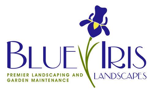 blue-iris-logo-large