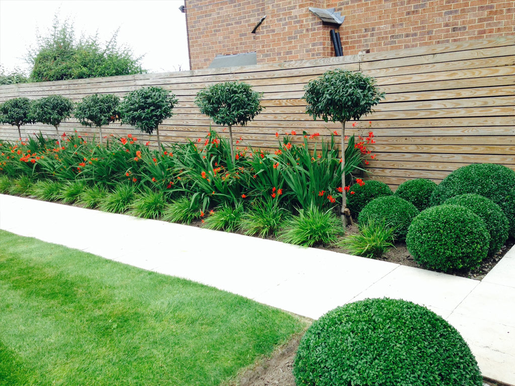 Garden Maintenance - Border Care and Topiary Maintenance